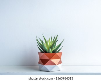 Photo of Cactus pot. Beautiful painted concrete pot. Green succulent plant in modern geometric concrete planter, copper painted on white wooden shelf on white wall background.