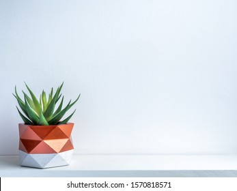 Cactus pot. Beautiful painted concrete pot. Green succulent plant in modern geometric concrete planter, copper painted on white wooden shelf on white wall background with copy space.