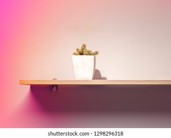 Cactus in a white pot on wooden shelf, gradient sunset wall effect