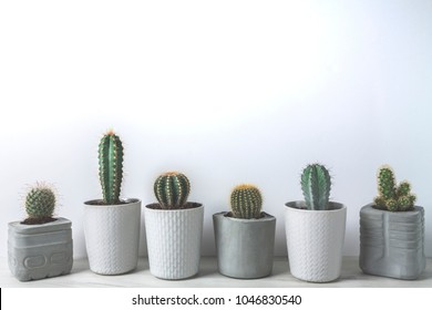 Cactuses in concrete diy pots on a white wall background with low contrast