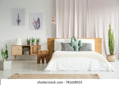 Cactuses everywhere in spacious bedroom with wooden furniture set