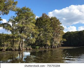 Caddo Lake Texas