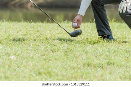 Caddy puts the golf ball in the designated position on the lawn at golf course.