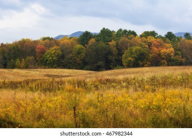 Cades Cove Field and Mountains