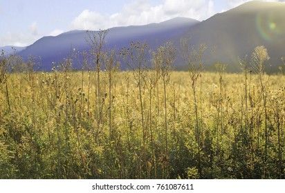 Cades Cove Field with Mountains -Great Smoky Mountains National Park