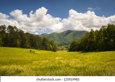 Cades Cove Great Smoky Mountains National Park Spring Scenic Landscape and Tennessee vacation outdoor travel destination