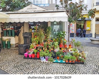 CADIZ, SPAIN - JANUARY 19, 2018: he Plaza of Flowers has stalls selling flowers everyday. Cadiz is a city and port in southwestern Spain