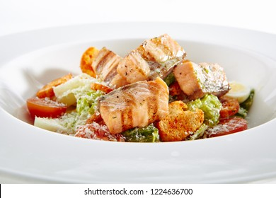 Caesar Salad with Grilled Salmon on Elegant Restaurant Plate Isolated. Salat with Red Fish Fillet, Quail Egg, Mini Baguette Crackers, Cherry Tomatoes, Lettuce Leaves, Caesar Sauce and Parmesan Cheese