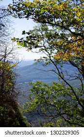 Caesar's Head SC Mountainside Trees
