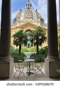 Cafe le jardin du petit palais in Paris France, idyllic with palm trees