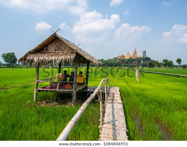 Cafe on the rice field,Thailand.