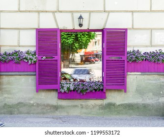 Cafe window with violet shutters and flowers on the windowsill