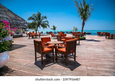 Caffe on tropical island with palm trees and amazing vibrant beach in Maldives.
