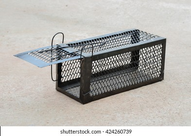 Cage mousetrap animal cage