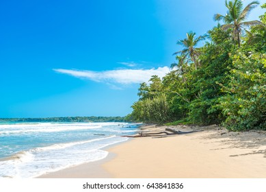 Cahuita - National Park with beautiful beaches and rainforest at caribbean coast of Costa Rica - recreation at paradise beaches