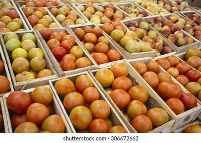 cajas de tomates maduros hechas de madera en feria agr�cola