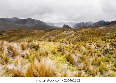 Cajas National Park, a national park in the highlands of Ecuador