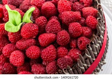 Cake decoration macro detail with raspberries and chocolate straws