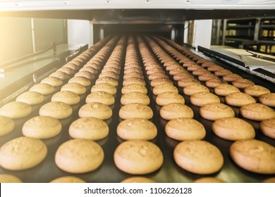 Cakes on automatic conveyor belt or line, process of baking in confectionery factory. Food industry, cookie production. Close up