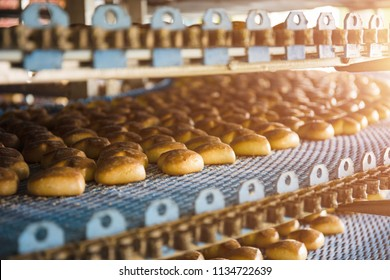 Cakes on automatic conveyor belt or line, process of baking in confectionery culinary factory or plant. Food industry, cookie and other sweet breadstuff production, toned, close up