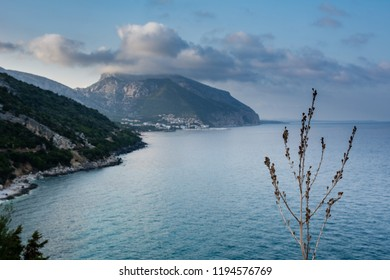 Cala Gonone beach with the majestic Tyrrhenian sea in Sardinia with branch in foreground on an overcast summer day, perfect vacation place. Turquoise seascape view.