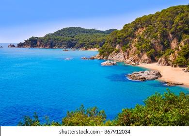 Cala Sa Boadella platja beach in Lloret de Mar of Costa Brava at Catalonia Spain