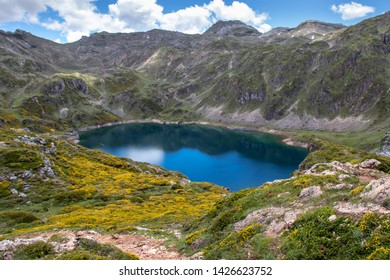 Calabazosa or Black glacial lake in the Somiedo national park, Spain, Asturias. Saliencia mountain lakes. Top view from the viewpoint. Genista occidentalis yellow flowers. Dark blue water.