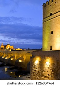 Calahorra Tower with bridge in Cordoba, Spain at night