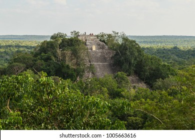 Calakmul mayan ruins in State of Campeche. The highest pyramid on the Yucatan Peninsula. Ancient city of the Mayans