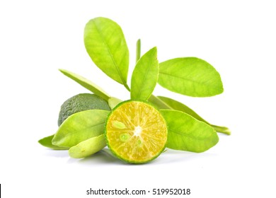 Calamansi on white background