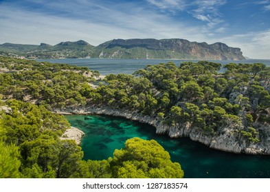 calanque port pin near cassis town provence france