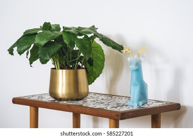 Calathea Musaica on a table next to a deer candle