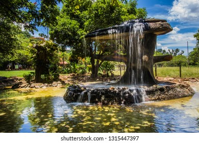 CALDAS NOVAS, BRAZIL - JANUARY 31, 2019:This traditional ande beautiful japanese garden is located in brazilian Caldas Novas City on January, 2019, Caldas Novas