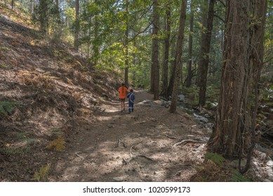 Caledonia Trail, Troodos National Forest Park, Cyprus-October 5, 2016: Sister and her younger brother enjoying their hike in the forest