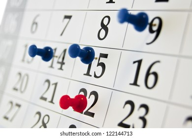 calendar needle