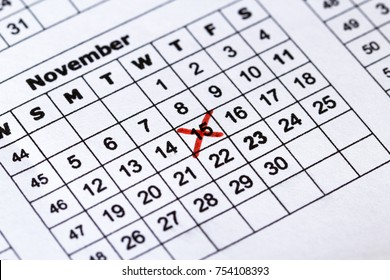 Calendar red cross date on the macro view.