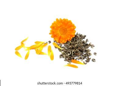 Calendula flower, marigold, seeds