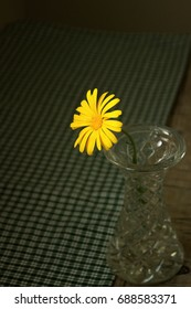 Calendula in a glass vase on a wooden table. Card.
