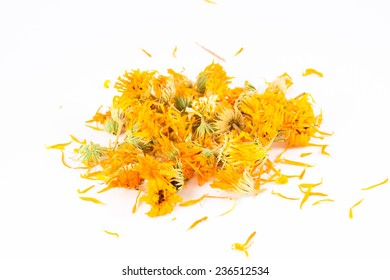 Calendula officinalis in white background
