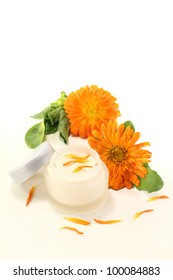 Calendula ointment with marigold flowers, leaves and fresh petals on a light background