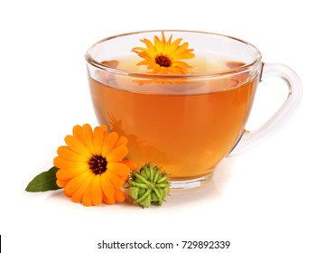 Calendula tea with fresh flowers isolated on white background