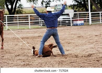 Calf roping action at a rodeo.