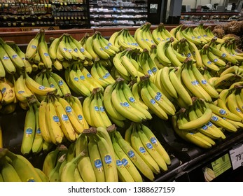Calgary, Alberta / Canada - January 12 2018: A very large selection of Cavendish Bananas.