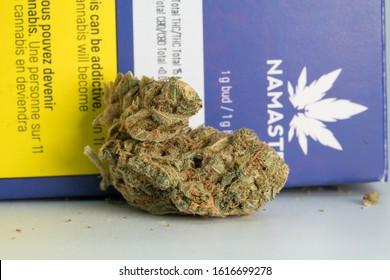 Calgary, Alberta / Canada - January 15 2020: Legal Canadian Dried Cannabis Flower