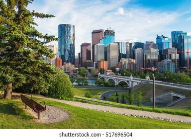 Calgary City Skyline and Park Bench in Alberta, Canada