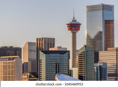 Calgary city skyline in warm evening light