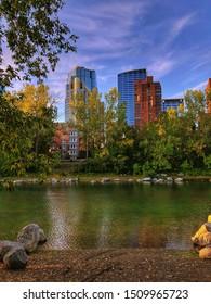 Calgary skyline from a city park
