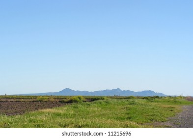 The California central valley. Fields of lush green grass, cat-tails, farmland, marsh and creeks. Sutter Buttes in the background.