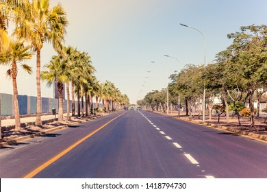 California city street in park outdoor district with perspective car road in summer sunny bright clear weather season time