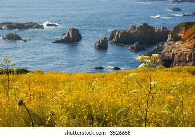 the California coast by Big Sur